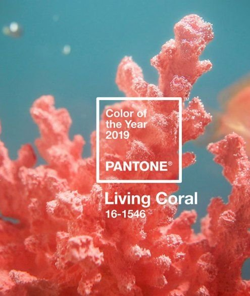 2019 színe az élő korall | Eleven Ruhatár
